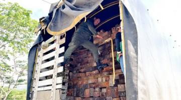 operativo-nacional-contra-el-transporte-ilegal-de-madera-1